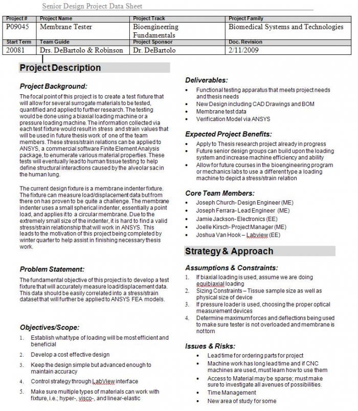 Screen Shot of 1-pg Project Plan