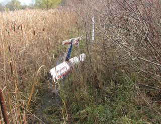 HobbiStar in an RIT swamp