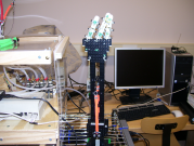 Front of the Prototyped Hand