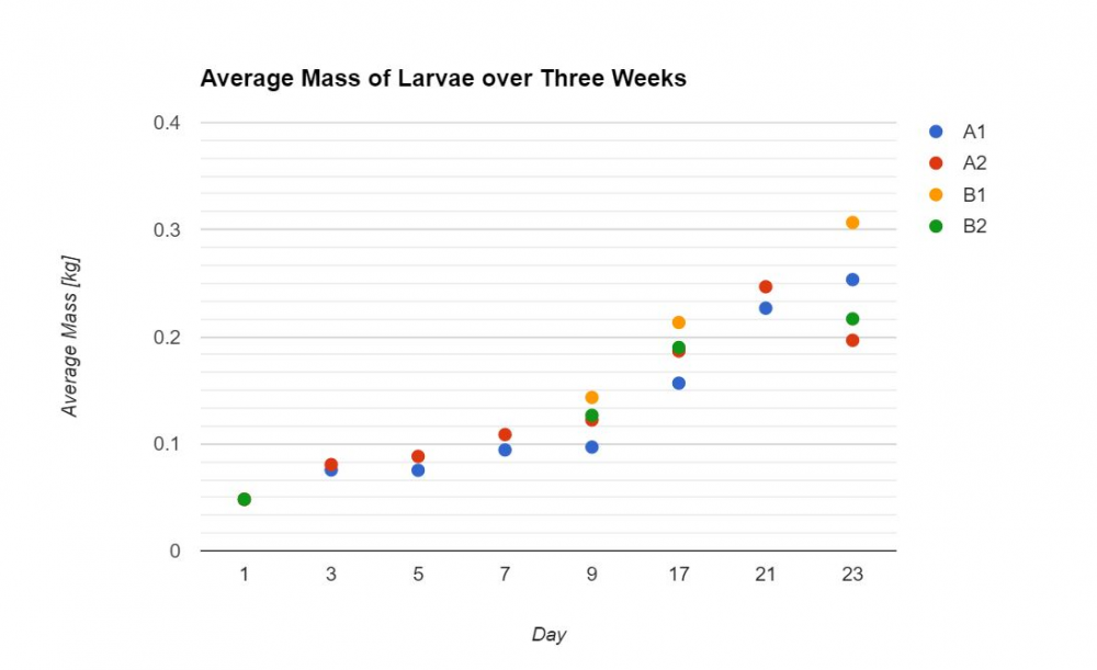 Graph of larvae growth