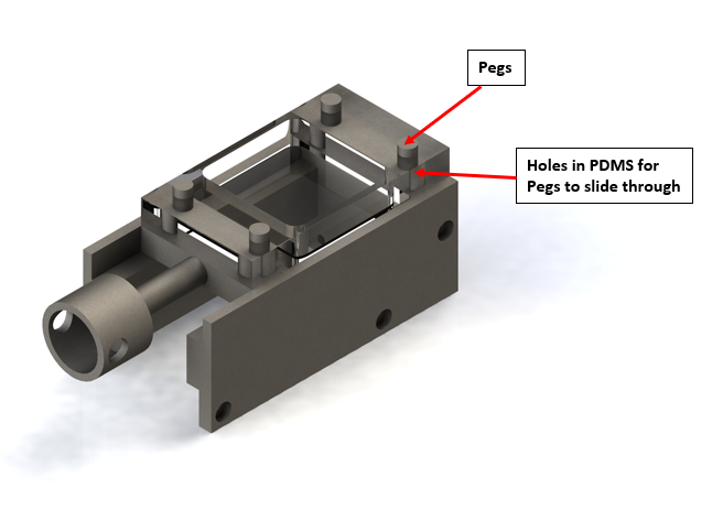 Figure 2: This is the SolidWorks CAD Model design for the hole and peg set up. There are a total of four pegs in the system; two stationary pins fixed to the base of the device, and two pins attached to the actuating arm that will cyclically strain (pull) the mold. The PDMS chamber contains 4 hollow channels for the pegs to attach.