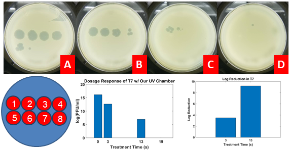 Results of Microbiological Testing. Shown in A-D are the plaques resulting from serial dilution plating of T7 in order Control, 3s treatment, 13s treatment, and 19s treatment, respectively. The blue circle at the bottom of the figure shows the dilution plating scheme for the experiment --- the number in the red circles indications the dilution of the sample plated in that location (i.e. 3 means a 10^-3 dilution). Plots on the right show the resulting PFU/ml at the tested conditions, and the log reductions of each condition from the control (19 seconds is not shown because there was no presence of T7 post treatment as is shown D the, single dot is likely from contamination).