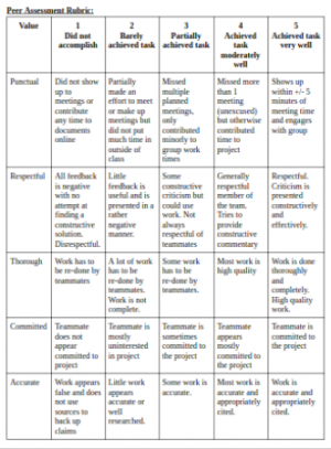 Values and Norms Peer rubric
